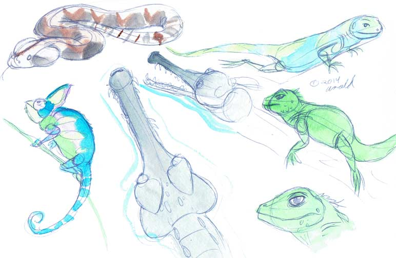 5.8.14 - National Zoo Sketches