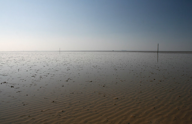 Maplin Sands from the Broomway