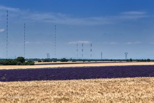 france frankreich provence südfrankreich lavendel hochplateau getreide lavende moustierssaintemarie mediterrannée provencealpescôtedazur eos6d getreidefelder sendemasten plateauvalensole juni2014