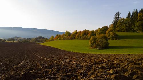 autumn fall mountain area tamoadamo light sun partlycloudy