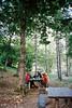 Loschi nei boschi