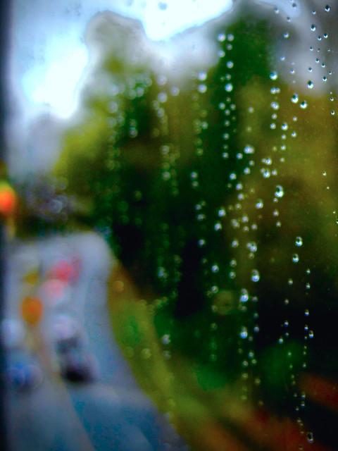 rainy IMG_8410, Canon POWERSHOT SD990 IS
