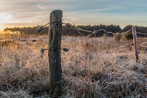Cold november morning