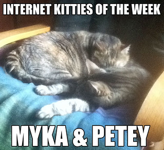 IKOTW myka and petey