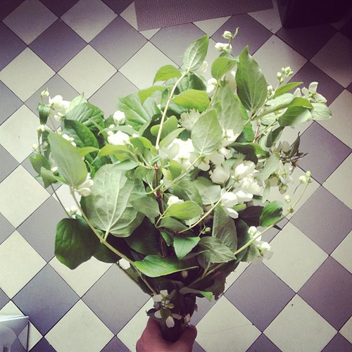 With this wonderful bouquet in my hands everybody was looking at me in he streets by la casa a pois