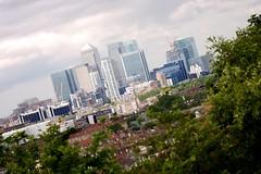 Overlooking suburbia