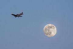 Luna + EC-XBT