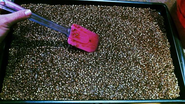 Homemade Cocoa Crispies5