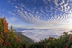 Overnight Camping At Gunung Irau