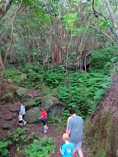 Hawaii - August 2013 207