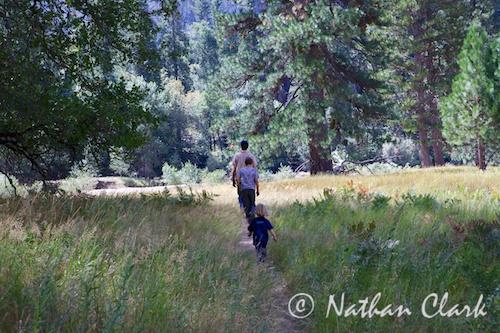 Taking a Walk in Yosemite Valley
