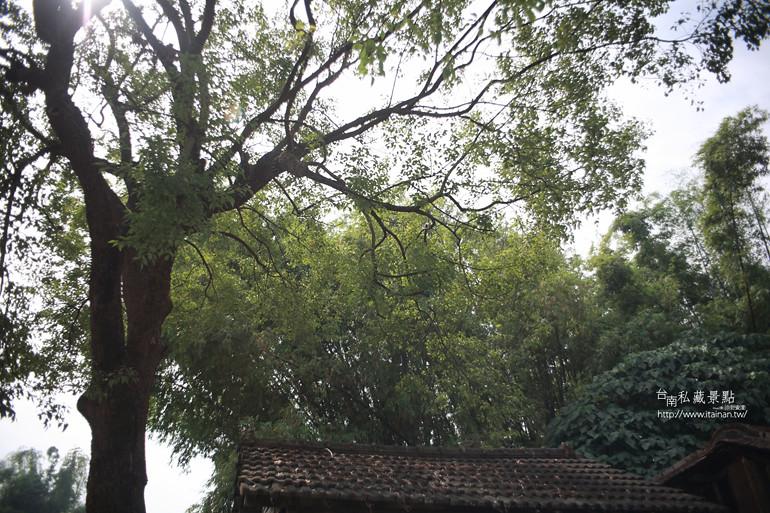 台南私藏景點--關廟新光社區 (9)