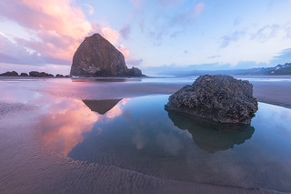 Wild World - Cannon Beach, Oregon