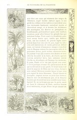 """British Library digitised image from page 192 of """"Notre Voyage aux pays bibliques"""""""
