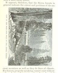 """British Library digitised image from page 163 of """"The Mountains of California [Illustrated.]"""""""