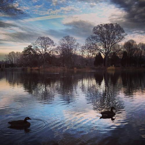 Serenity (26/365) by elawgrrl