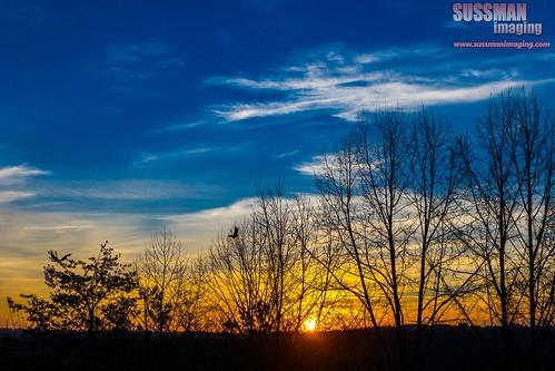 trees sky sunrise georgia unitedstates gainesville lakelanier hallcounty thesussman sonyslta77 sussmanimaging