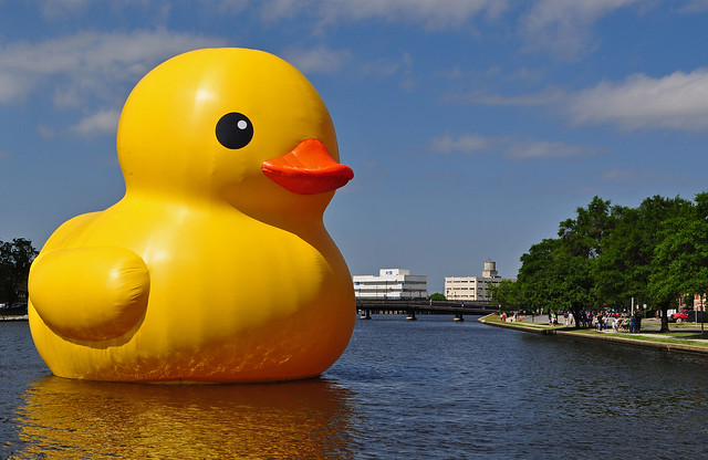 Rubber Duck (10)