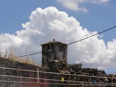 Η τελευταία μέρα της φετινής Άνοιξης στη Ψίνθο