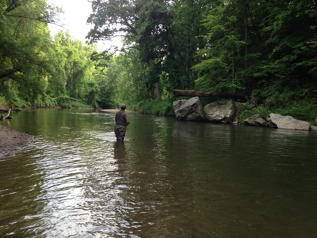 Fly fishing the two fish a day stretch on the Gunpowder River