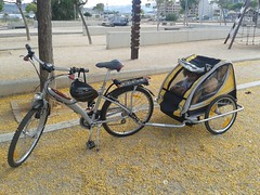 hybrid bicycle(0.0), cyclo-cross bicycle(0.0), racing bicycle(0.0), tarmac(0.0), mountain bike(1.0), bicycle trailer(1.0), road bicycle(1.0), wheel(1.0), vehicle(1.0), sports equipment(1.0), land vehicle(1.0), bicycle frame(1.0), bicycle(1.0),