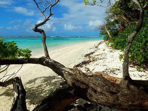 Deserted beach in Motu - Huahine - French Polynesia