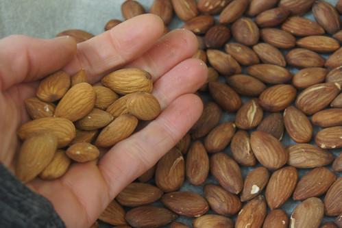 almond butter recipe DSC02427