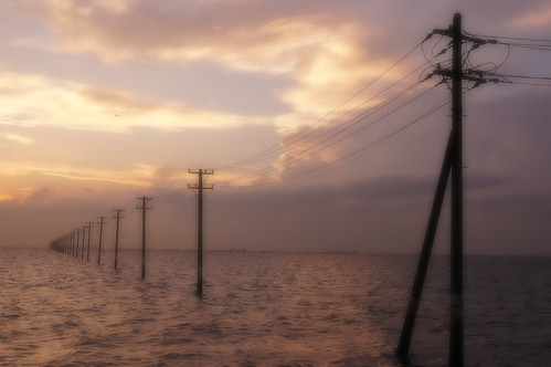 Soft Focus Low utility poles into the sea 12