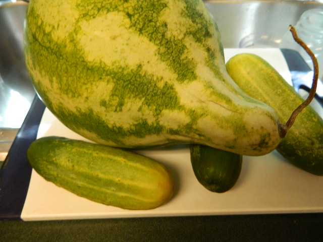 Watermelon and Cukes