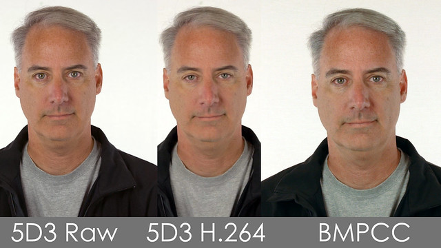 Canon 5D3 ML Raw vs H.264 vs BMPCC