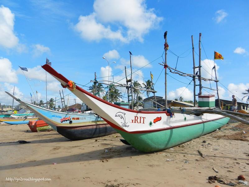 Шри Ланка рыбой славится