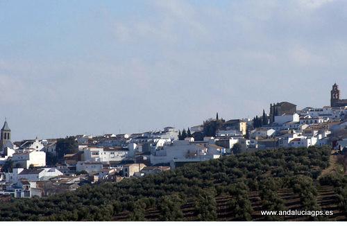 Jaén - Arjona 37 56' 51 -4 4' 26