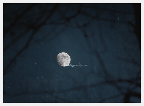 She was like the moon - a part of her was always hidden by bford13