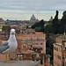 Roma. Palatino. by lepotev