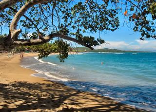 Life's a beach..Dominican Republic.