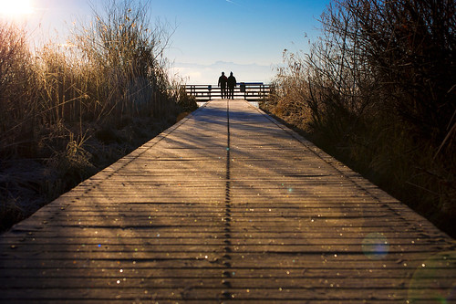 world wood morning blue shadow sea people lake alps reflection silhouette yellow sunrise canon landscape pier frost bokeh 5d around 40 stm 40mm f28 silouhette siloutte 5dmarkiii 5dmark3 ef40mm naturschutzgebietunterergreifensee