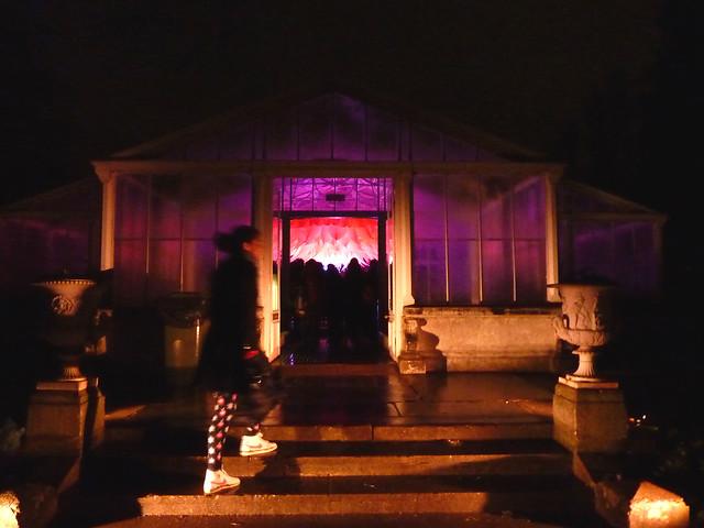 kew-gardens-after-dark-16