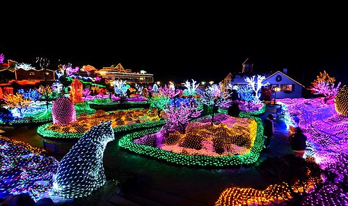 A Fairly-tale Garden