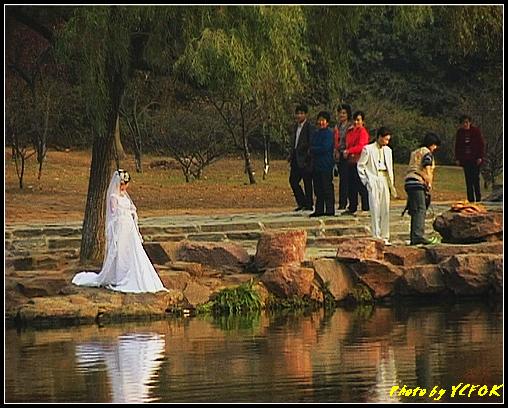 杭州 西湖 (其他景點) - 681 (北山路湖畔 孤山公園內 拍攝婚紗相)