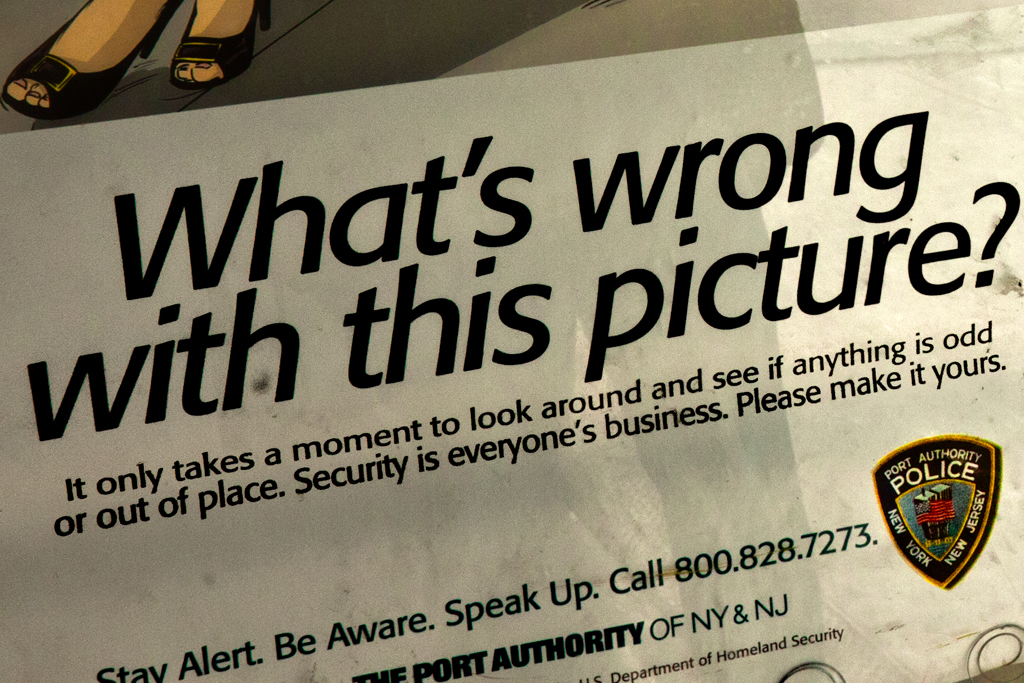 What's-wrong-with-this-picture--Washington-Heights-(detail)