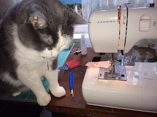 Phia learning to be a quilt inspector