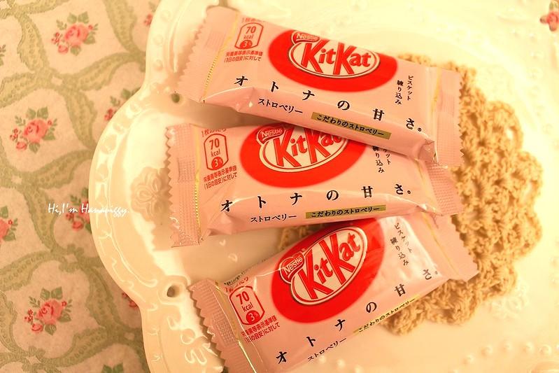 日本零食同樂會 (16)