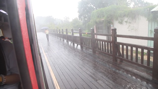 Pouring rain along Alishan railway, Taiwan - video