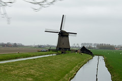 2013.04 HOLLANDE - Vue sur la route