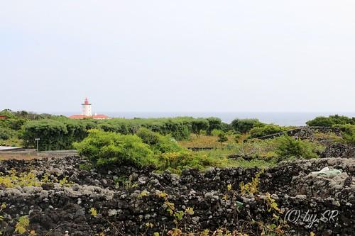 Azores2014_0567