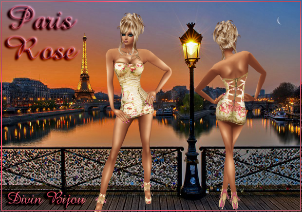 Paris Rose Banner