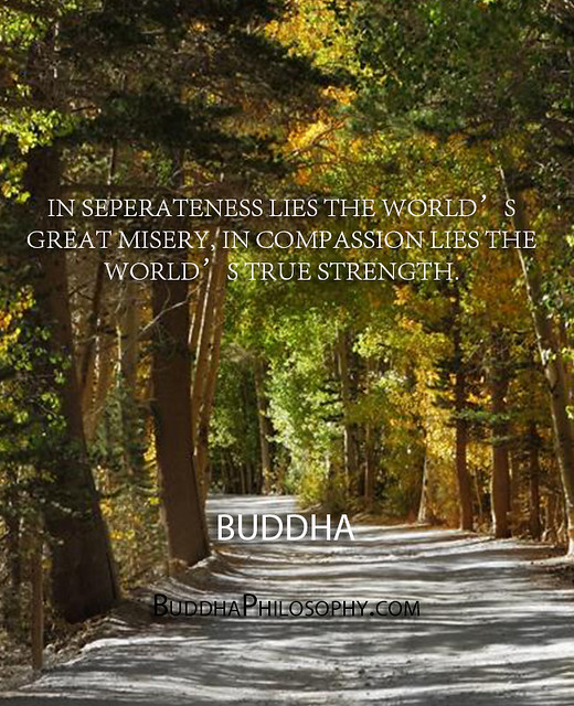 ''In seperateness lies the world's great misery, in compassion lies the world's true strength.'' - Buddha