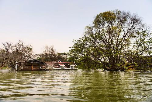 Kenya - Lake Baringo 04