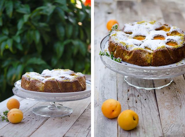 torta di albicocche2