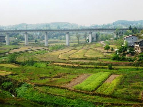 Hubei13-Wuhan-Chongqing-Guangan (31)
